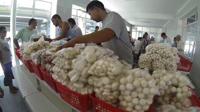Zona de quesos en Siab Bazaar
